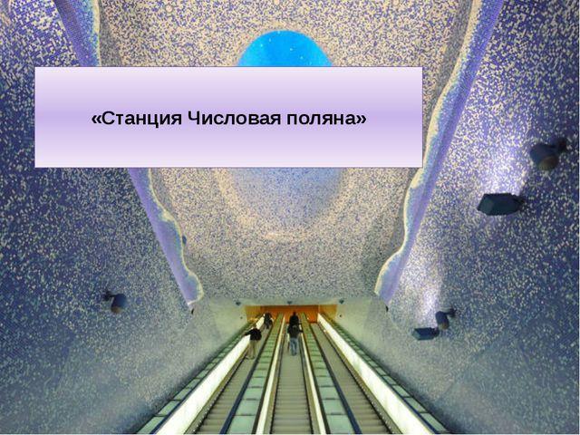 «Станция Числовая поляна»