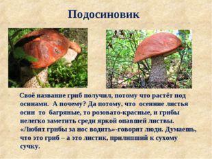 Подосиновик Своё название гриб получил, потому что растёт под осинами. А поче