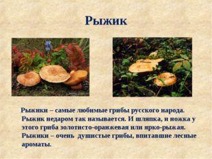 Рыжик Рыжики – самые любимые грибы русского народа. Рыжик недаром так называе