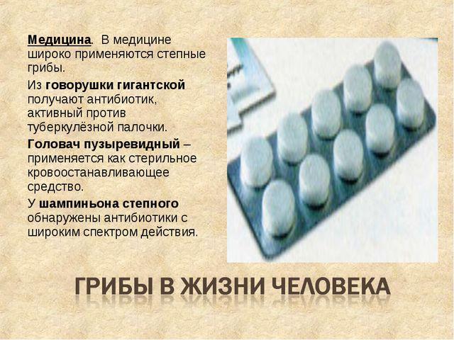 Медицина. В медицине широко применяются степные грибы. Из говорушки гигантско...