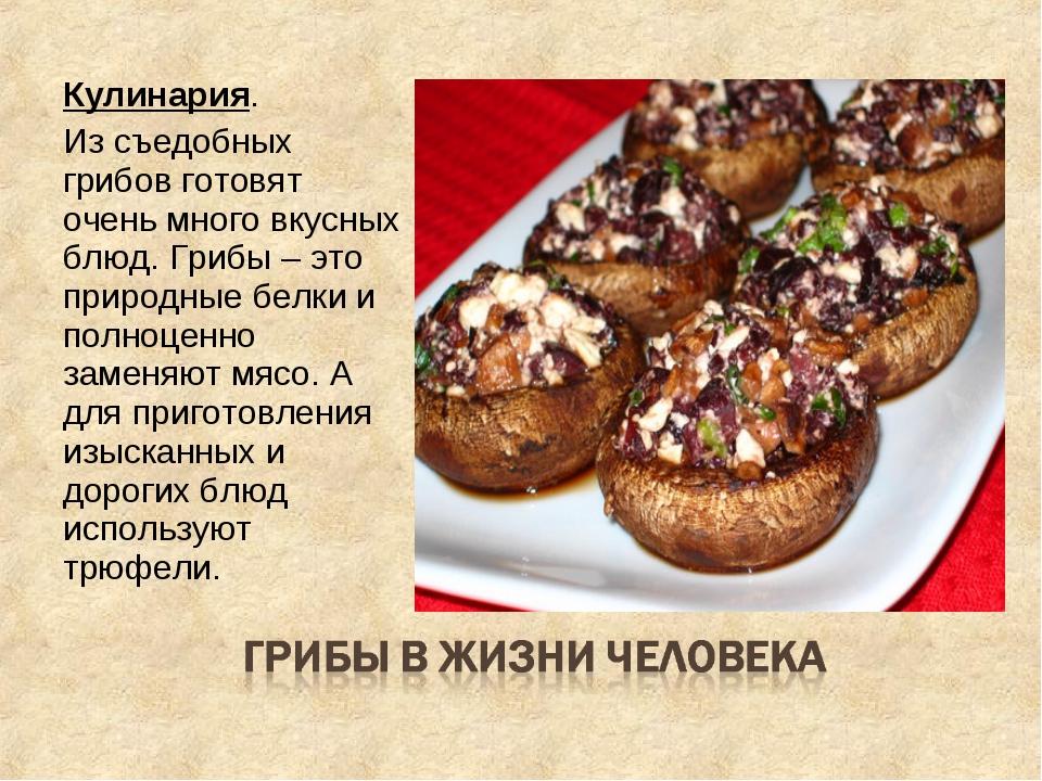 Кулинария. Из съедобных грибов готовят очень много вкусных блюд. Грибы – это...