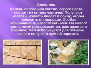Известняк. Камень белого или светло- серого цвета, состоит из мягких частичек