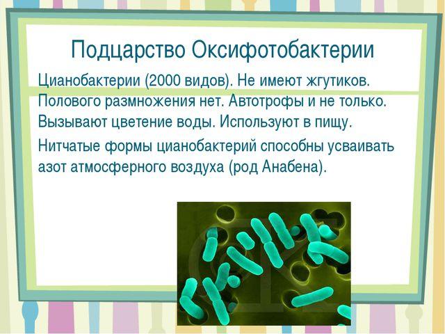 Подцарство Оксифотобактерии Цианобактерии (2000 видов). Не имеют жгутиков. По...