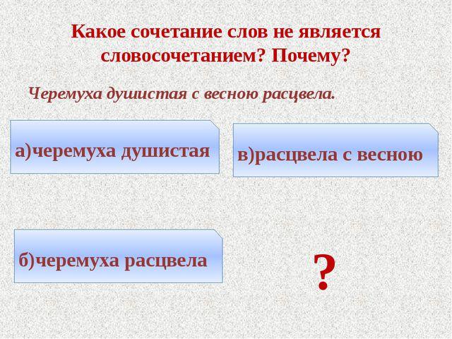 Какое сочетание слов не является словосочетанием? Почему? Черемуха душистая с...