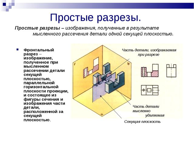 Простые разрезы. Фронтальный разрез – изображение, полученное при мысленном р...