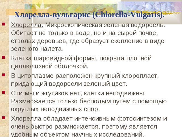 Хлорелла-вульгарис (Chlorella-Vulgaris). Хлорелла.Микроскопическая зеленая...