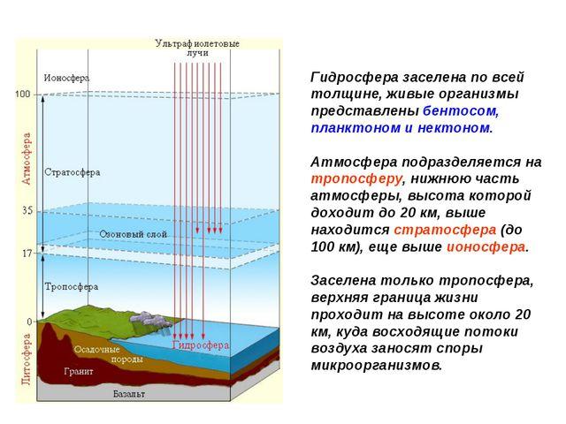 Гидросфера заселена по всей толщине, живые организмы представлены бентосом, п...