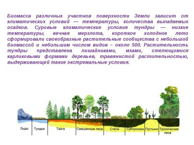 Биомасса различных участков поверхности Земли зависит от климатических услови...