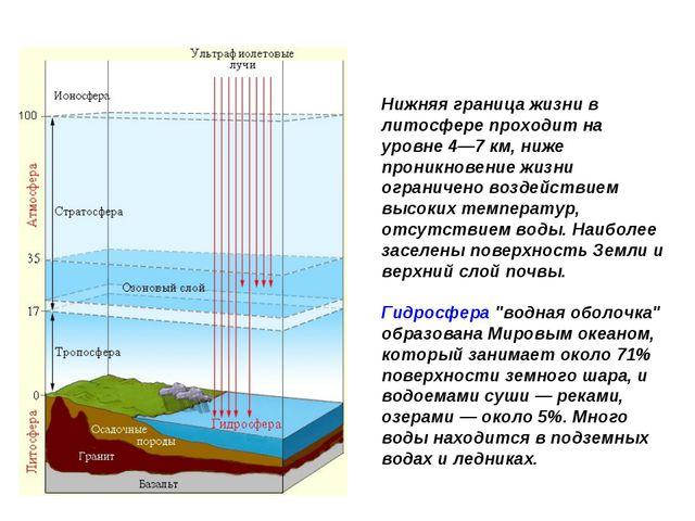 Нижняя граница жизни в литосфере проходит на уровне 4—7 км, ниже проникновени...