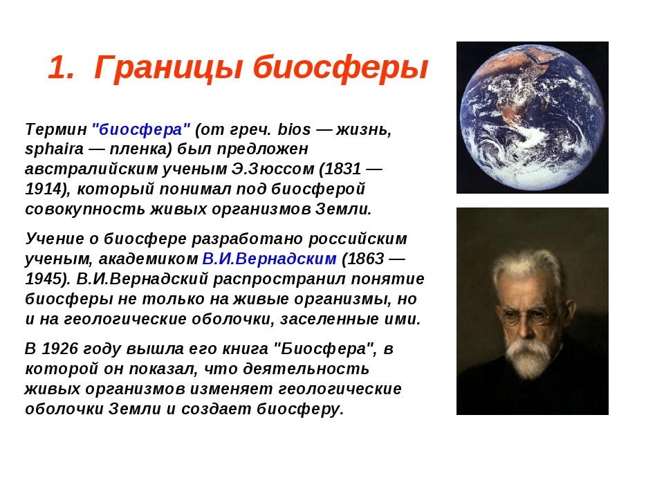 "1. Границы биосферы Термин ""биосфера"" (от греч. bios — жизнь, sphaira — пленк..."
