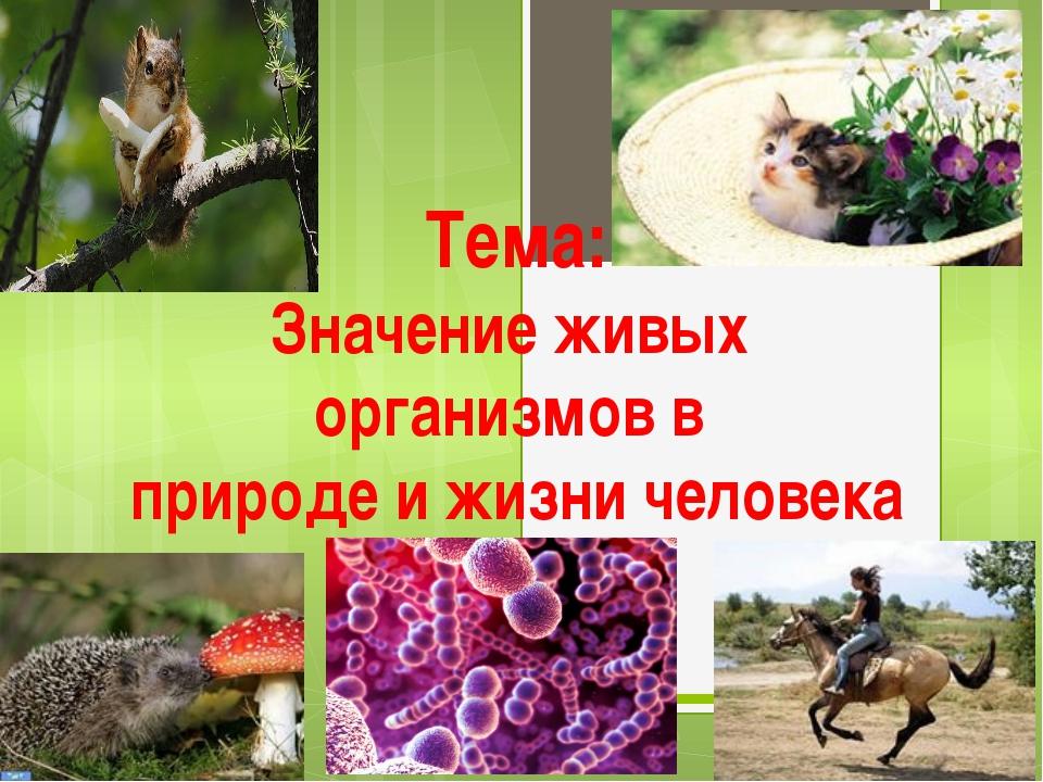 Тема: Значение живых организмов в природе и жизни человека
