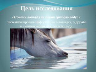 Цель исследования «Почему лошади не пьют грязную воду?» систематизировать инф
