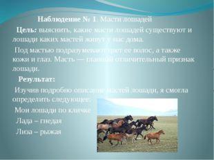 Наблюдение № 1. Масти лошадей Цель:выяснить, какие масти лошадей существую