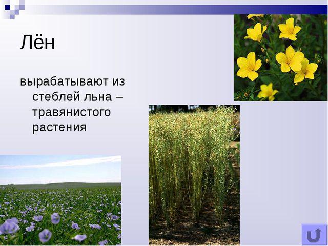 Лён вырабатывают из стеблей льна – травянистого растения