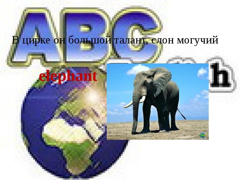В цирке он большой талант, слон могучий elephant