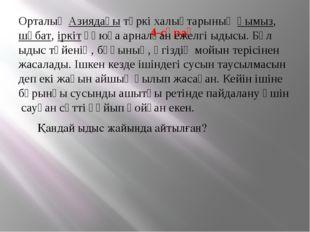 4-сұрақ ОрталықАзиядағытүркі халықтарыныңқымыз,шұбат,іркітқұюға арналғ