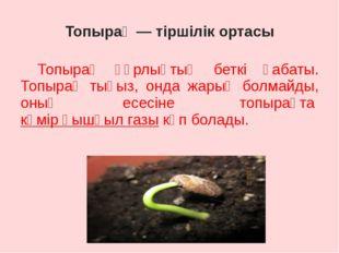 Топырақ — тіршілік ортасы Топырақ құрлықтың беткі қабаты. Топырақ тығыз, онд