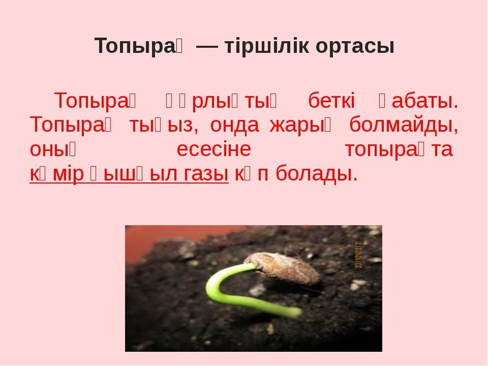 Топырақ — тіршілік ортасы Топырақ құрлықтың беткі қабаты. Топырақ тығыз, онд...