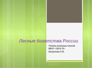 Лесные богатства России Учитель начальных классов МБОУ «СШ № 23» Евстропова Л