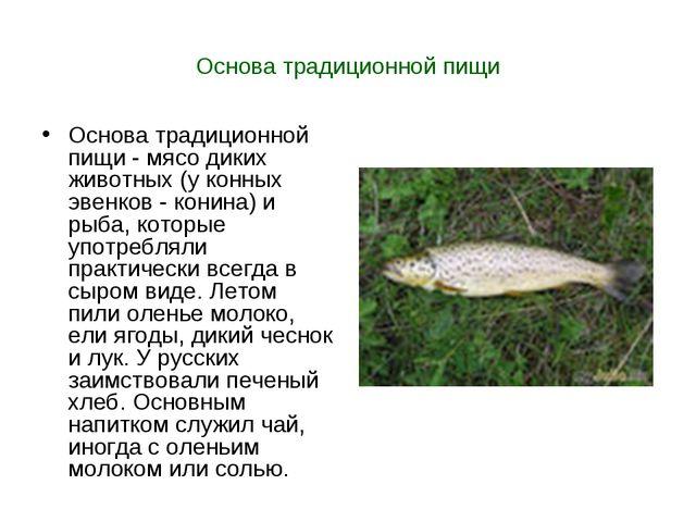 Основа традиционной пищи Основа традиционной пищи - мясо диких животных (у ко...