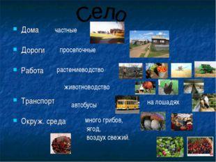 Дома Дороги Работа Транспорт Окруж. среда частные проселочные растениеводство