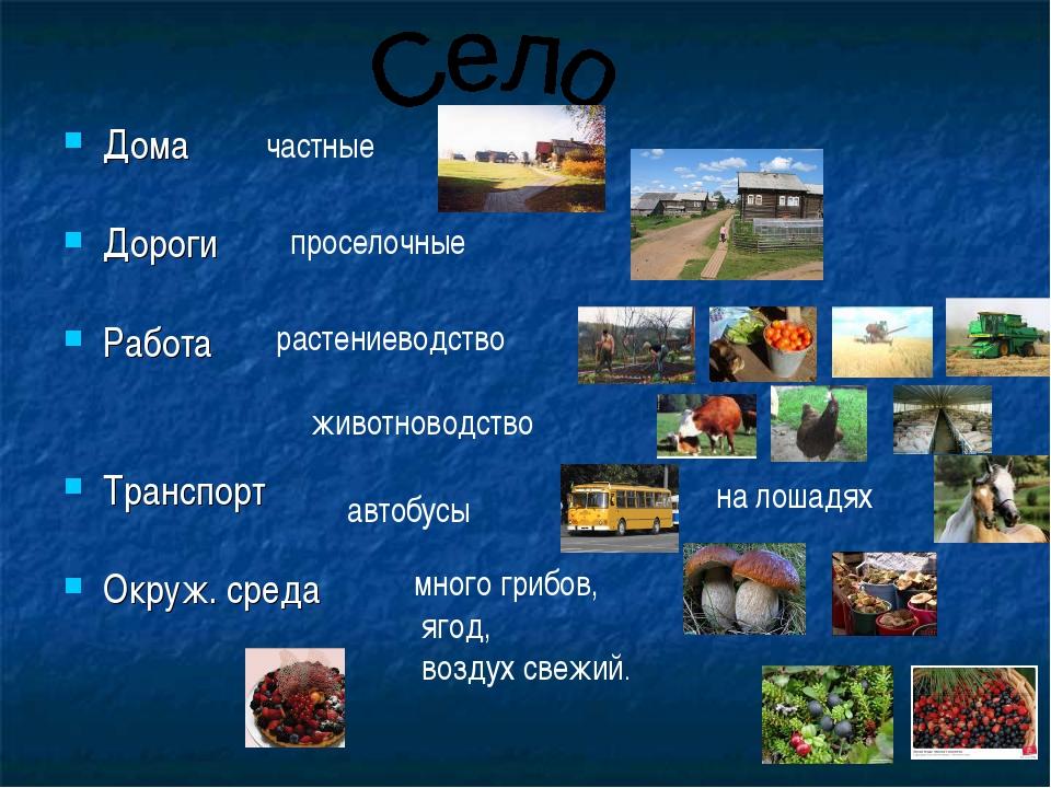 Дома Дороги Работа Транспорт Окруж. среда частные проселочные растениеводство...