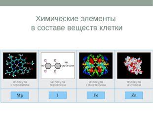 Химические элементы в составе веществ клетки