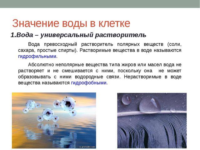 Значение воды в клетке Вода – универсальный растворитель Вода превосходный р...