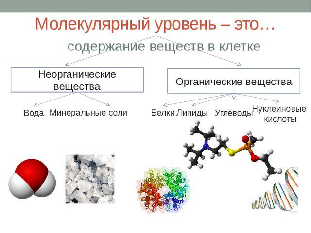Молекулярный уровень – это… Неорганические вещества Органические вещества Вод...