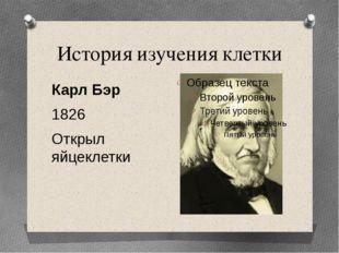 История изучения клетки Карл Бэр 1826 Открыл яйцеклетки