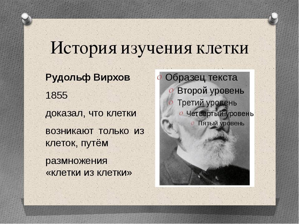 История изучения клетки Рудольф Вирхов 1855 доказал, что клетки возникают тол...