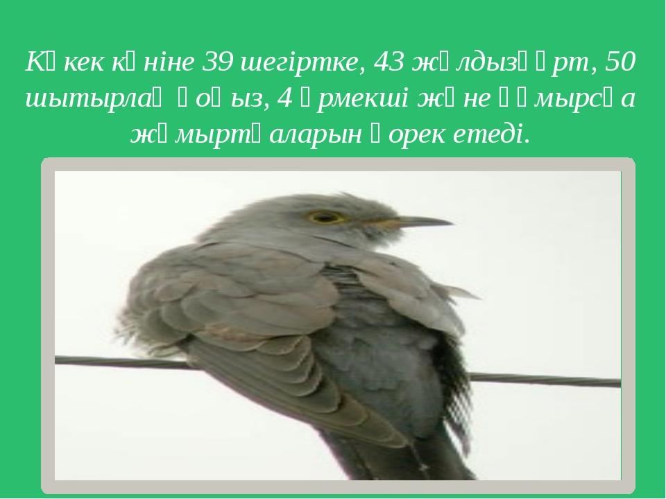 Көкек күніне 39 шегіртке, 43 жұлдызқұрт, 50 шытырлақ қоңыз, 4 өрмекші және құ...