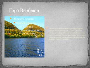 Гора Верблюд Любой, кто хотя бы однажды посещал гору Верблюд слышал про мест