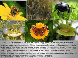 С тех пор как человек появился на Земле, окружающие растения и животные внуша