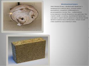 Изготовление бумаги Люди делают бумагу, обрабатывая древесину и превращая её