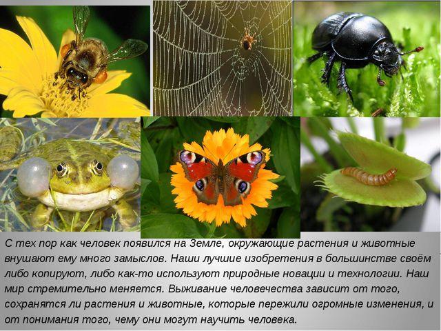 С тех пор как человек появился на Земле, окружающие растения и животные внуша...