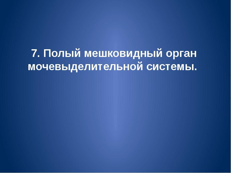 7. Полый мешковидный орган мочевыделительной системы.