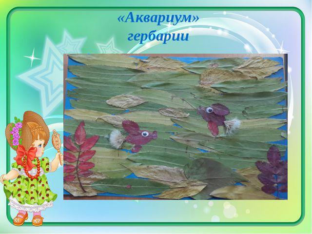 «Аквариум» гербарии