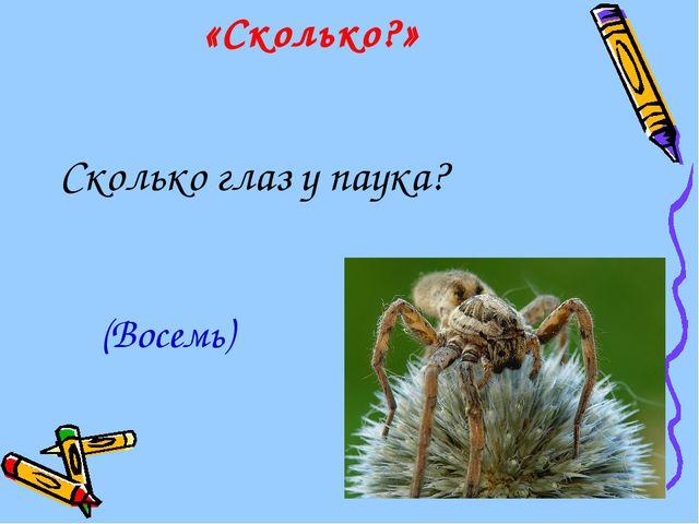 «Сколько?» Сколько глаз у паука? (Восемь)