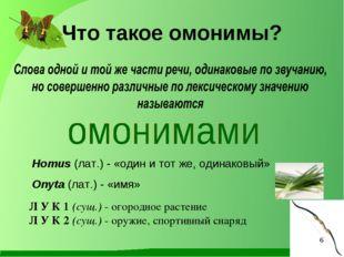 Homus (лат.) - «один и тот же, одинаковый» Onyta (лат.) - «имя» Что такое омо