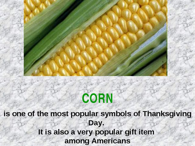 CORN is one of the most popular symbols of Thanksgiving Day. It is also a ve...