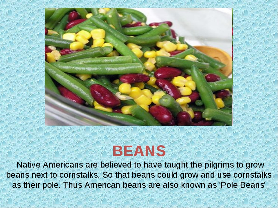 BEANS Native Americans are believed to have taught the pilgrims to grow bean...