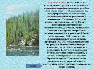 Красная книга — это книга об исчезнувших, редких и исчезающих видах растений,