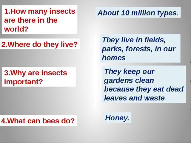 1.How many insects are there in the world? 2.Where do they live? 3.Why are in...