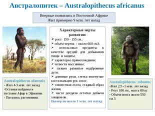 Австралопитек – Australopithecus africanus Впервые появились в Восточной Афри