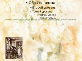 Илюша воспитывался в дворянской семье в родовом селе Обломовка, где жизнь про