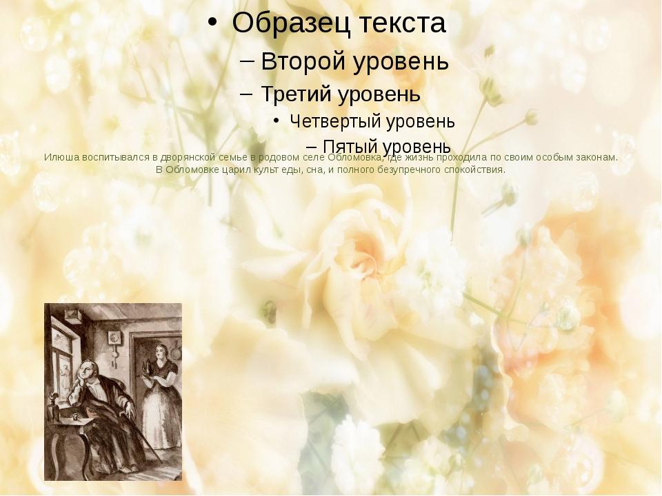 Илюша воспитывался в дворянской семье в родовом селе Обломовка, где жизнь про...