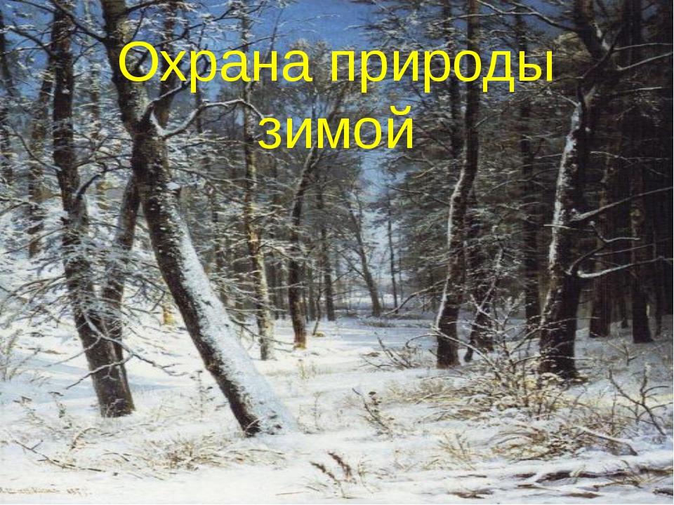 Охрана природы зимой