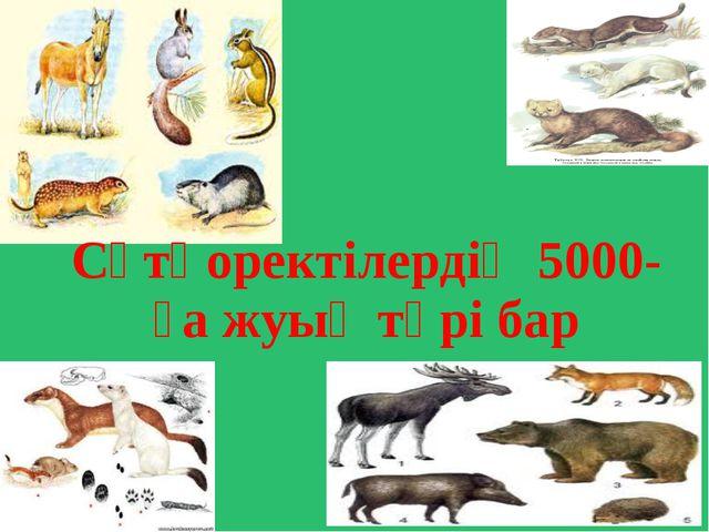 Сүтқоректілердің 5000-ға жуық түрі бар