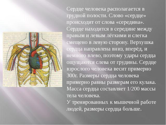 Сердце человека располагается в грудной полости. Слово «сердце» происходит о...